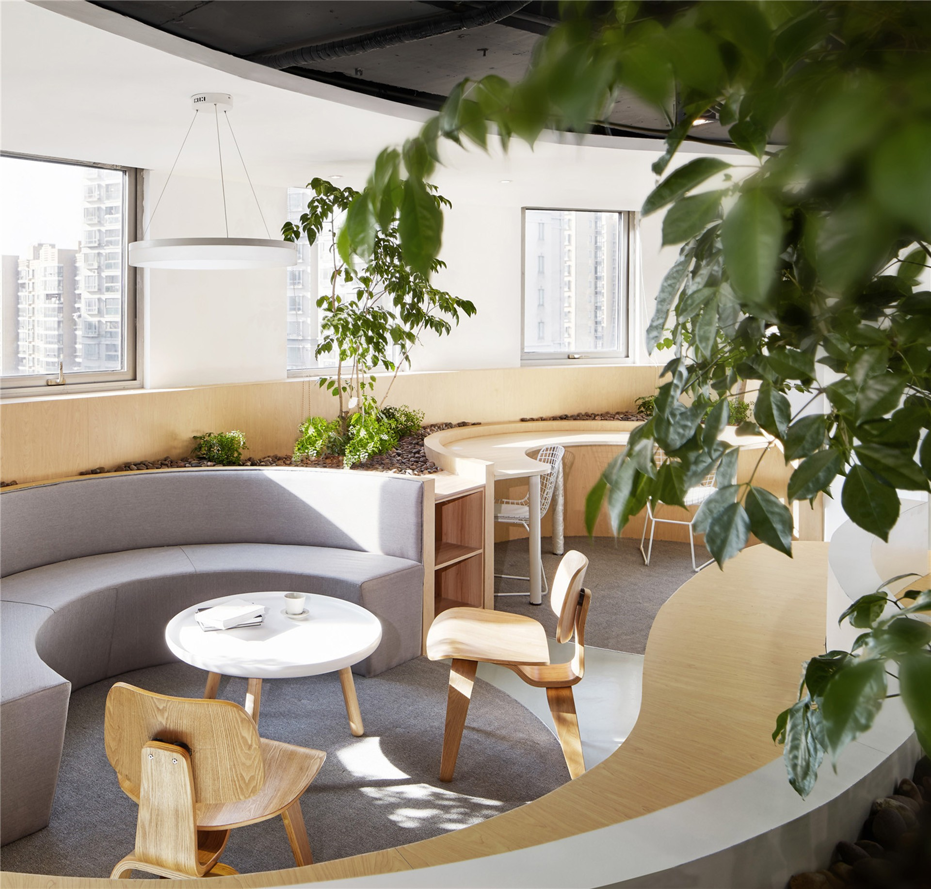Celebrating nature. An office by Muxin Design and Research