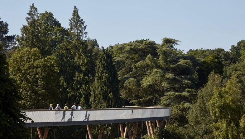 Walking above the trees, Glenn Howells Architects, Stihl Treetop Walkway