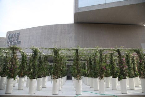 Green oases and agriculture in the city: AgrAir, Radicity and Green Gallery