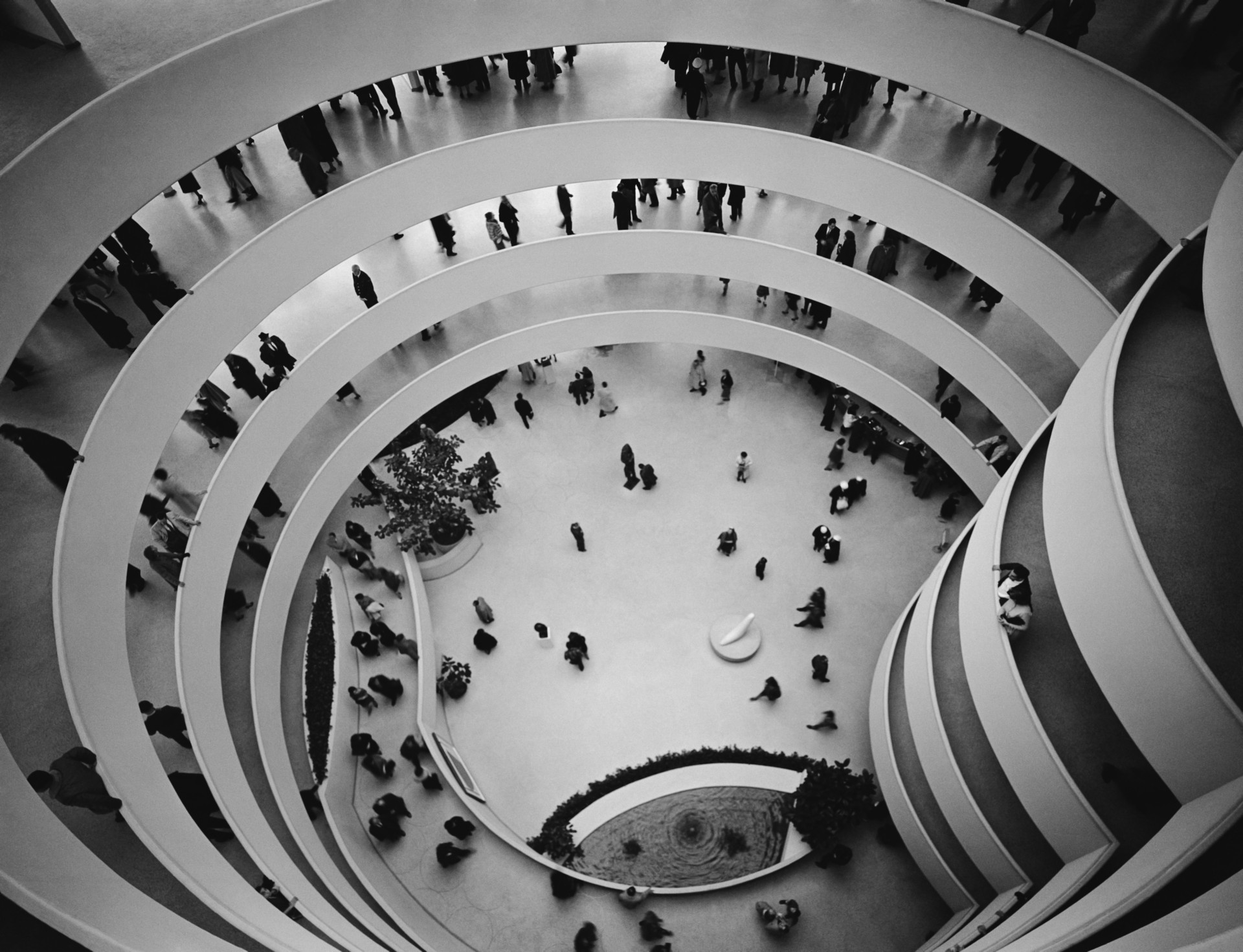 Borradura Tacón revista  Frank Lloyd Wright's Guggenheim Museum turns 60   Floornature