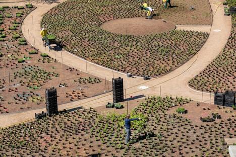 Piet Oudolf designs Perennial Garden on Vitra Campus, in Weil am Rhein