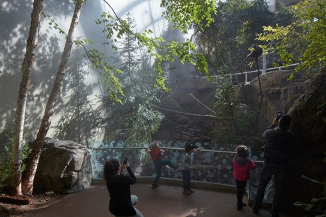 Kanva, the Montreal Biodome: a living museum