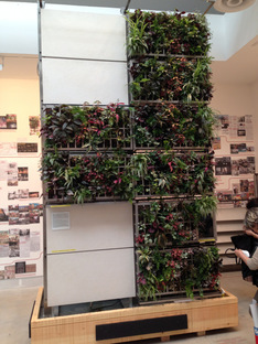Koolhaas's Biennale and architecture fundamentals