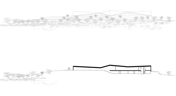 Heneghan Peng Architects The Museum Of Palestine In