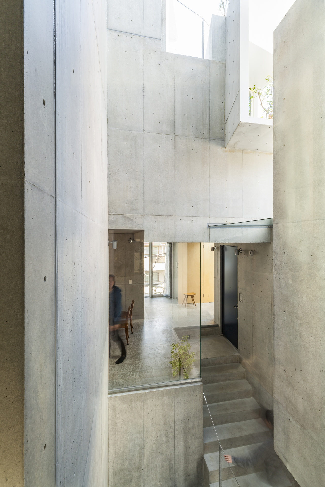 Akihisa Hirata: Tree-ness House, a house and art gallery in Tokyo