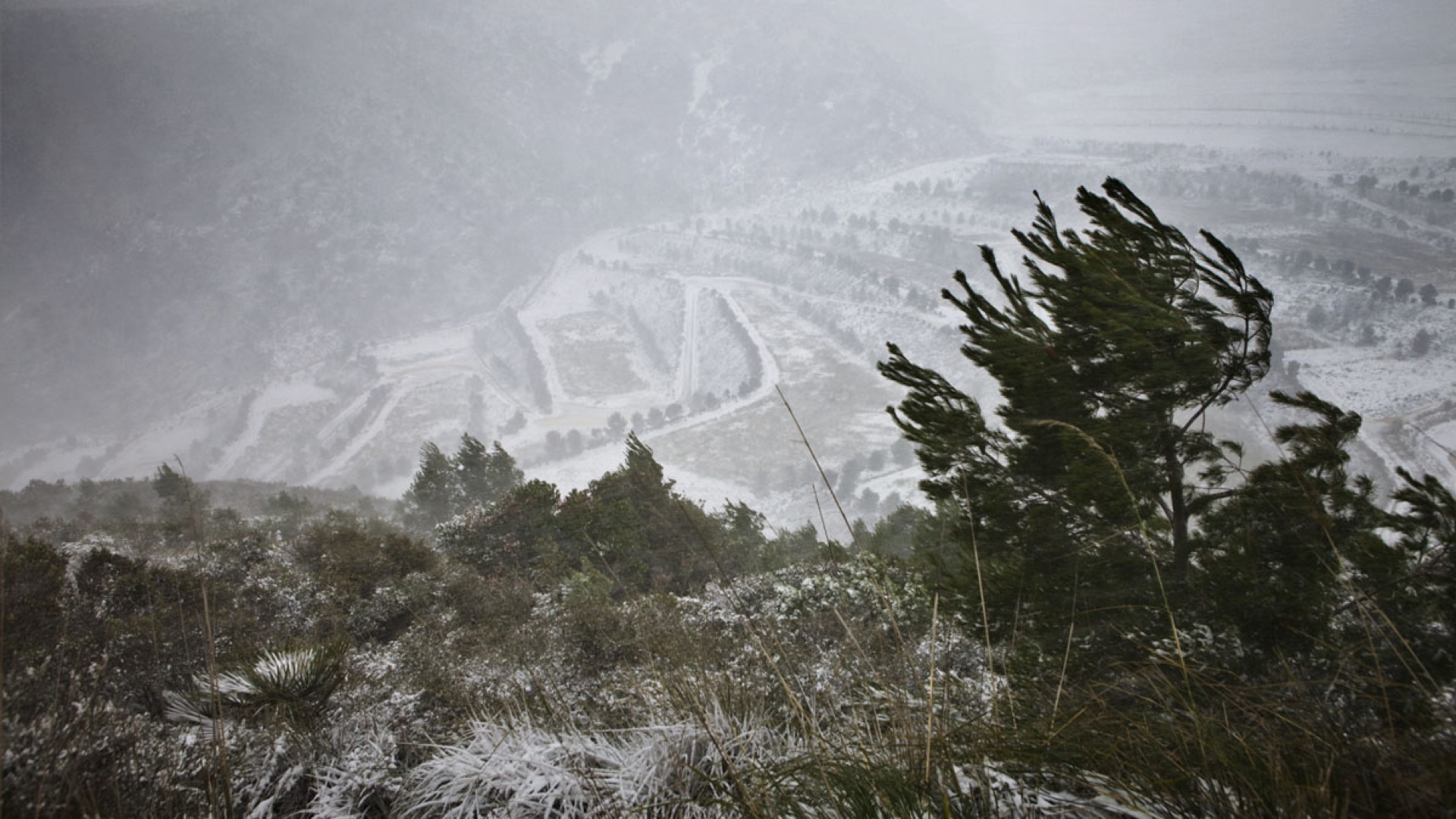 Batlle i Roig: landscape restoration of the Garraf waste landfill