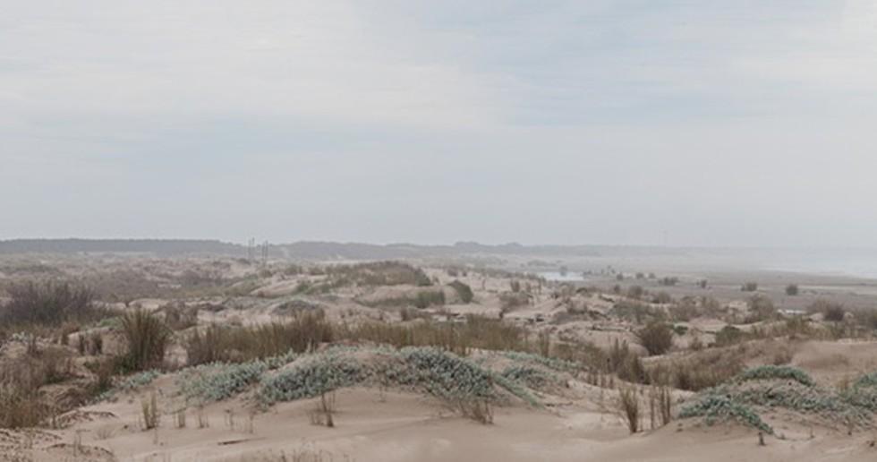 Alric and Galindez's Casa RM, between the pampas and the Atlantic Ocean