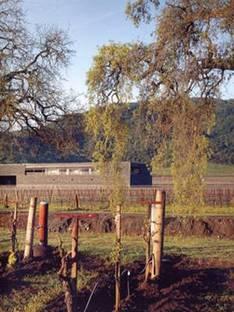 Herzog & De Meuron, Dominus Winery, California