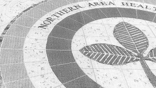Northern Area Health Board