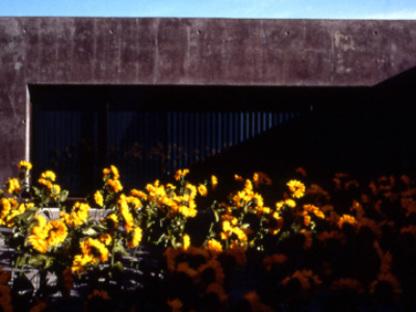 Concert Stadium. Vitrolles (France). Rudy Ricciotti. 2000