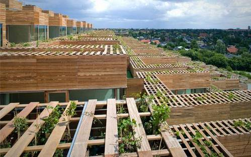 Green roofs Ph. Jens Lindhe