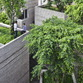 House for trees by Vo Trong Nghia Architects in Ho Chi Minh City