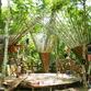 Building Trust International, Bamboo Landmark Design Challenge