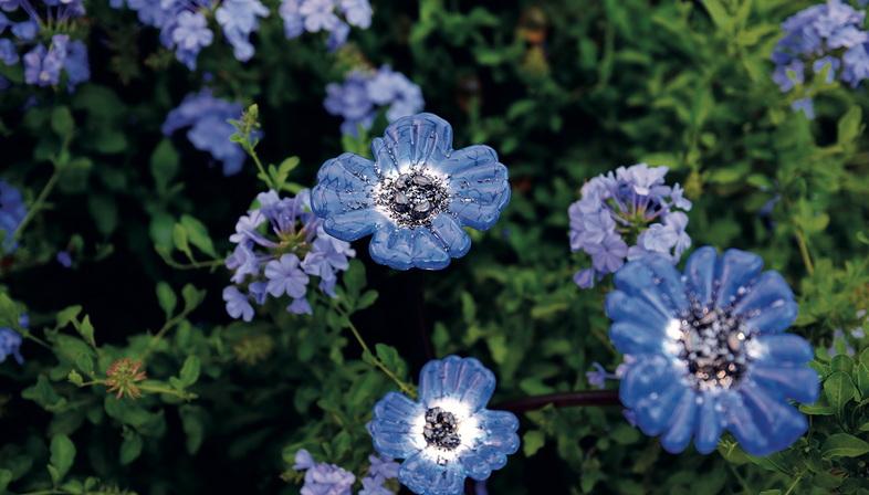 Flower Power, 26th International Garden Festival