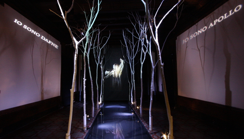 Ancient Greek mythology revisited as a multimedia installation