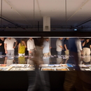 Exhibition Fernando Guerra A Photography Praxis under X-Ray