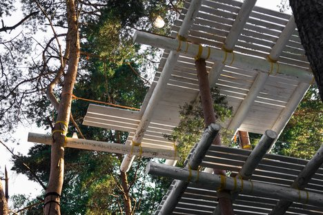 Treehouse Place, how to build constructions in the treetops
