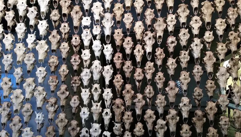Documenta14 Kassel. The impressions of Floornature part 2
