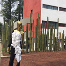 Mexican Fashion and Art. Paulina López