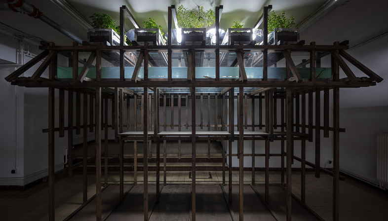 Aquaponic Eel Bar by Leopold Bianchini
