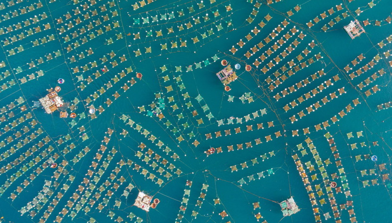 SkyPixel, the best aerial photos of 2017