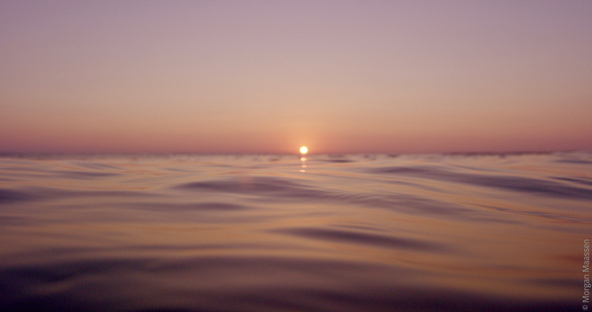 International Ocean Film Tour, 5th edition