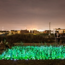 LuzInterruptus in Valencia to salvage some vegetable gardens