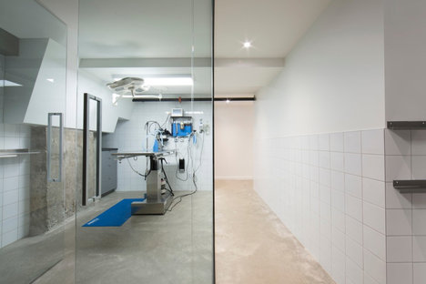 A veterinary clinic in Montreal by TBA/Thomas Balaban Architecte