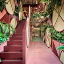 Masquespacio designs Kaikaya tropical sushi restaurant