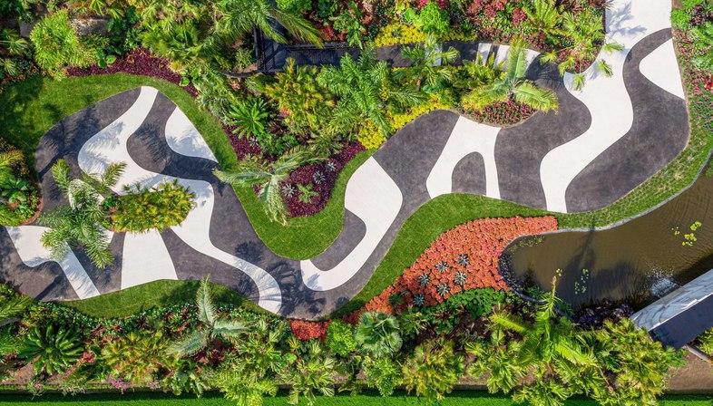 Brazilian Modern: The Living Art of Roberto Burle Marx al New York Botanical Garden