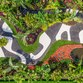 Brazilian Modern: The Living Art of Roberto Burle Marx al New York Botanical Garden