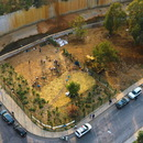 Beirut RiverLESS Urban Forest and how to regenerate a city