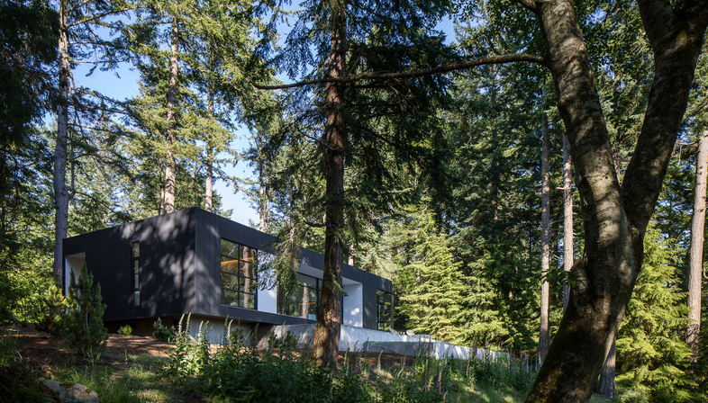 Nature and art, a project by Heliotrope Architects
