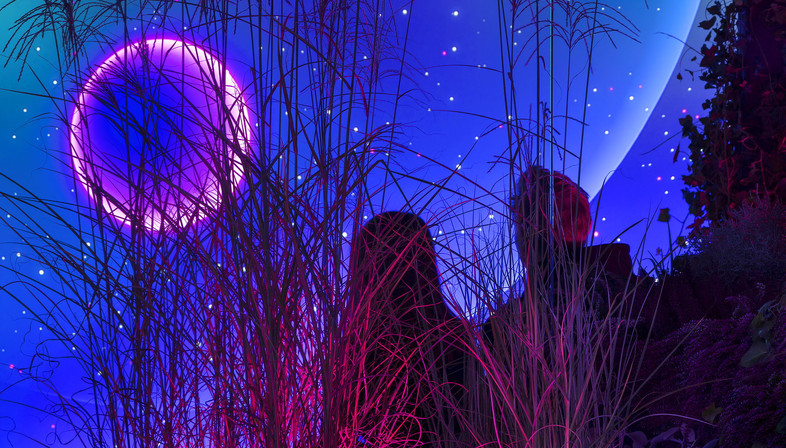 Magenta Moon, an interactive installation by flora&faunavisions in Berlin