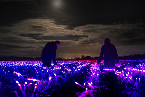 GROW by Daan Roosegaarde, the beauty of agriculture