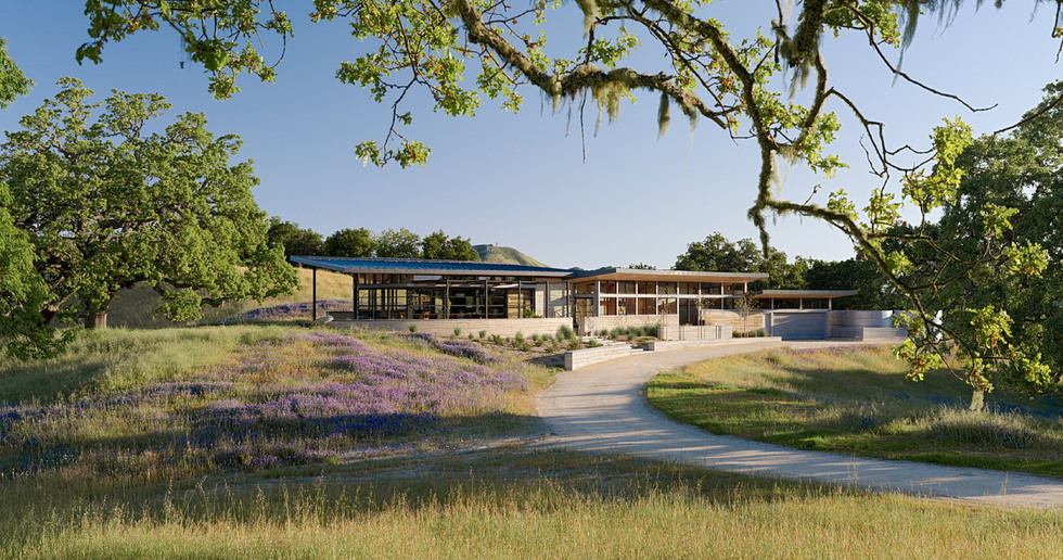 Sustainable architecture and film: Feldman Architecture's Caterpillar House