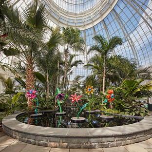 KUSAMA: Cosmic Nature, an exhibition at the New York Botanical Garden.