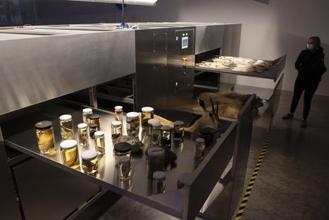 Land.Milk.Honey. The Israeli Pavilion at the 17th Architecture Biennale