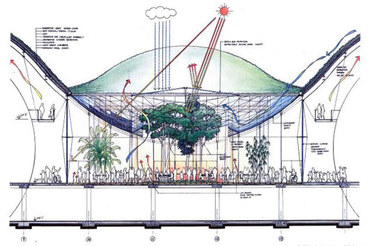 California academy of sciences renzo piano s enormous green roof in