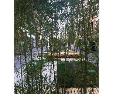 Greenery in the city: Temporary urban garden in Bari