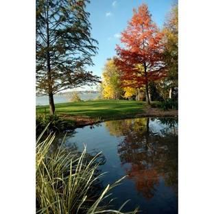 Dallas Arboretum and Botanical Garden: wonders of autumn.