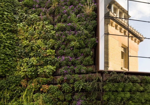Vertical garden to integrate the existing building and the addon ...