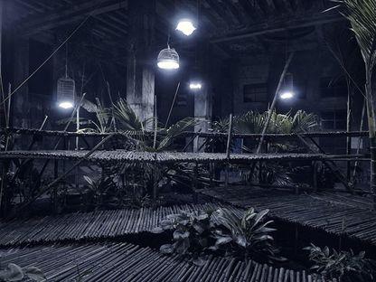 The Garden. The project for a temporary garden installation in Hanoi.