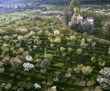 Stefano Maruzzo. The Venetian Villas viewed from above