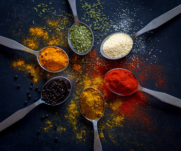 Food&Kitchen: a conversation with writer Dina Ravaglia (part II)