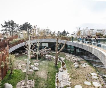 Bamboo formworks for BIG's yin and yang Panda House