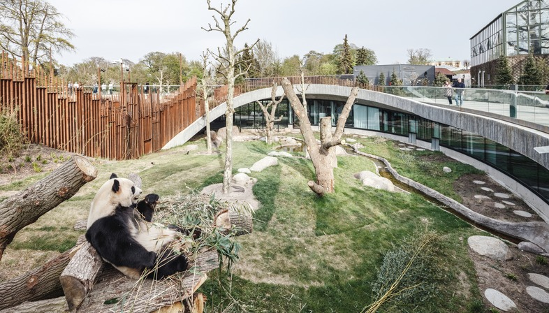 Bamboo formworks for BIG's yin and yang Panda House